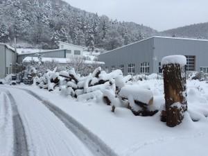 Holzlager im Winter